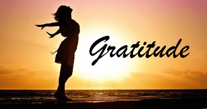 A Life of Gratitude – Essence Of Qatar