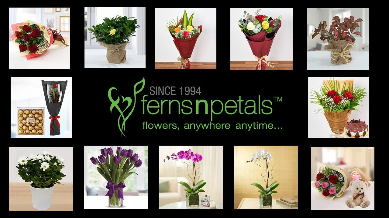 Ferns N Petals -Flower and gifting firm setting their foots in Qatar
